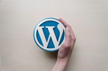 WordPress投稿画面の書式をカスタマイズする方法【コピペでOK】